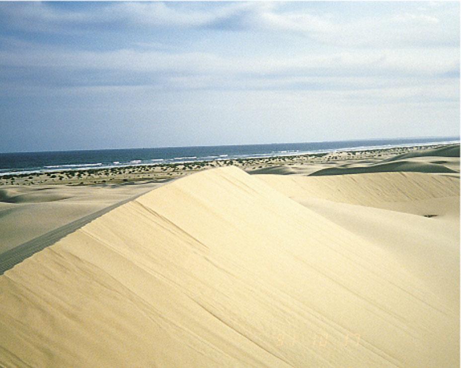 Sand Business
